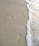 Footprint on the beach. Stock Images