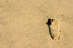 Footprint of a child in the sand. Stock Images