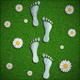 Footprint with a chip on the surface of the grass. Stock Photography
