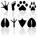 Footprint collection Royalty Free Stock Photos