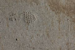A Footprint in a Concrete Sidewalk. A raised boot tread in a cement sidewalk with stones and stains Stock Photos