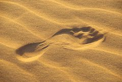 Footprint in the desert. Wahiba sands Oman stock photography