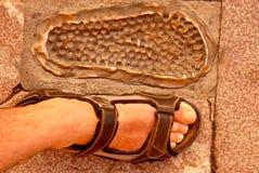 Footprint and foot Royalty Free Stock Photo
