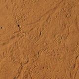 Footprint Royalty Free Stock Image