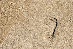 Footprint in golden sand. A footprint in golden sand on the shore of the sea stock photos