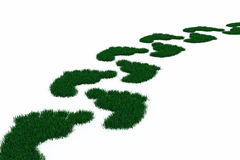 Footprint from grass Stock Images