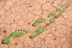 Footprint of grass Stock Photos