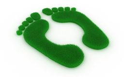 Footprint from grass. Print of feet in the form of a grass on a white background Stock Photography