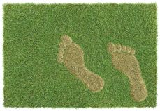 Footprint on grass Stock Images