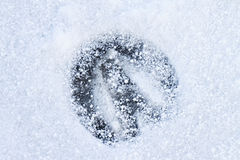 Footprint of a Horse Stock Image