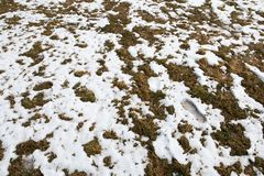 Footprint of a human in the snow in mountains after Winter in Spring royalty free stock photos