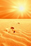Footprint In The Desert Royalty Free Stock Image