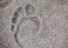 Footprint on Mariahilferstrasse pavement Royalty Free Stock Photos