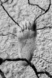 Footprint in Mud Stock Photos