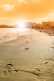 Footprint near the shoreline Stock Images