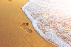 Free Footprint Of Tourist Feet On The Sea Beach Sand For Go Walking Travel In Holiday Royalty Free Stock Images - 166960709