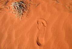 Footprint in a red sand. Close shot of a footprint in a red sand. Rainbow valley, Southern Northern Territory, Australia Stock Photos