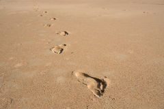 Footprint Relax in summer time on sand beach island nature Stock Images