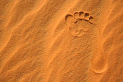 Footprint in the sand royalty free stock photos