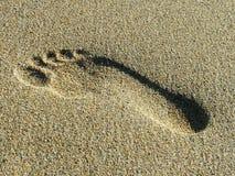 Footprint in Sand. Footprint in wet sand Stock Photo