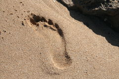 Footprint in Sand. A footprint in the soft tropical sands of the island of Molokai, Hawaii stock photo