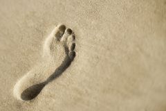 Footprint in sand. Stock Images