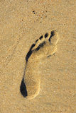 Footprint on the sand Royalty Free Stock Images