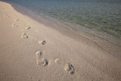 Footprint in sand. Footprint along a white sand beach of a tropical island royalty free stock image