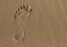 Footprint on sand. Lone human footprint on grainy sand with copy space Royalty Free Stock Photos
