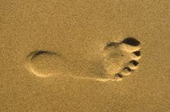 Footprint on sand Stock Photo