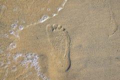 Footprint on the sandy beach Stock Image