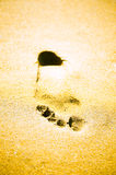 Footprint on sand. Background abstract: Footprint on sand with foam Stock Images