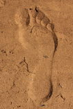 Footprint in sand. Foot imprint in sand which looks raised due to lighting Royalty Free Stock Photos