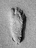 Footprint in the sand. Footprint on the beach at Hawksbill royalty free stock photo
