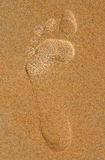 Footprint in the sand on the beach Royalty Free Stock Images