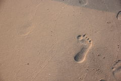 Footprint in the sand on a beach Stock Photo