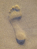 Footprint in the sand Stock Photography