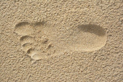 Footprint. In sand on a beach Royalty Free Stock Image