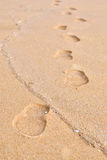 Footprint on a sand Stock Image
