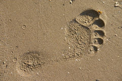 Footprint on sand beach Stock Photo