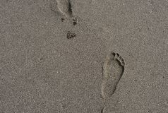 Footprint in the sand on the beach. Picture of footprint in the sand on the beach Stock Photography