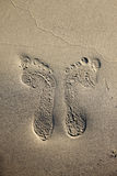 Footprint in the sand. Footprint on sand beach. Walking on the beach Royalty Free Stock Photography