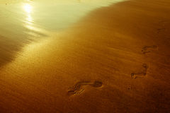 Footprint in sand Stock Image