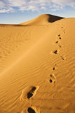 Footprint on sand dune. A footprint trail on a sand dune in the Sahara desert Royalty Free Stock Photos