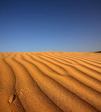 Footprint on sand dune in desert Royalty Free Stock Photo