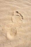 Footprint in sand. Dune, Fuerteventura. Royalty Free Stock Photos
