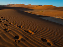 Footprint on sand dune in vast desert. Footprint on natural sand dune in vast desert Royalty Free Stock Photos