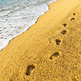 Footprint on sand with foam Royalty Free Stock Image