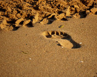 Footprint in the sand. The next person on the sandy beach Stock Image