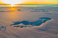 Footprint on Sand. Photo of footprint on a beach in the early morning. Sunrise over Caribbean sea Royalty Free Stock Image